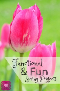 Are you ready to get out of the house and enjoy spring? Check out these fun and functional spring projects anyone can do! https://www.catherinealford.com/2015/02/26/fun-functional-spring-projects/